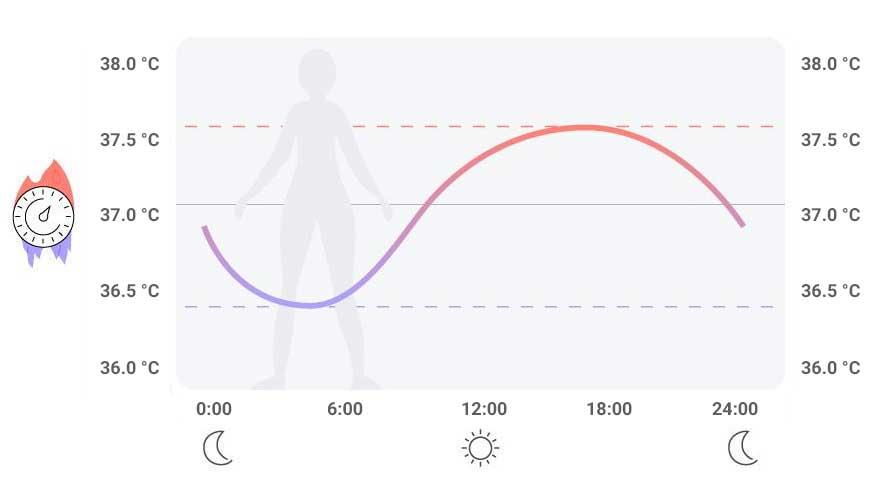 graf změny tělesné teploty během dne
